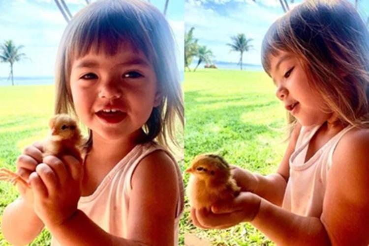 Zoe encanta seguidores de Sabrina Sato em momento de carinho na natureza